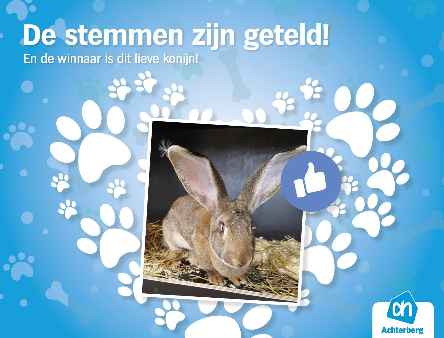Het liefste, leukste en knapste huisdier van Steenbergen is…