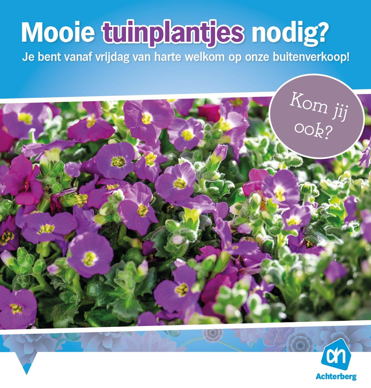 Mooie tuinplantjes nodig?
